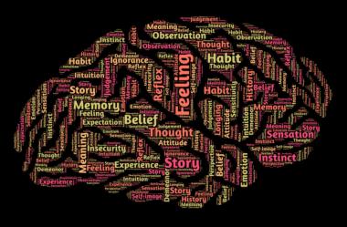 Você sabe avaliar qual dos tipos de inteligência você mais se identifica?