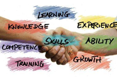 Conheça as 7 habilidades profissionais mais exigidas pelo mercado!