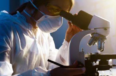 Conheça 12 áreas da Biomedicina para atuar